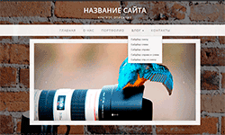 wordpress header.php